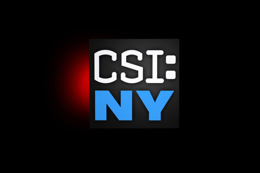 http://ds-gangclub.blogspot.com/2013/12/csi-new-york.html